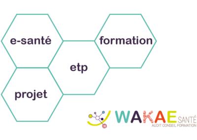 carte de visite wakae V°