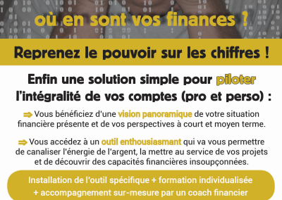 Flyer pilotage finances
